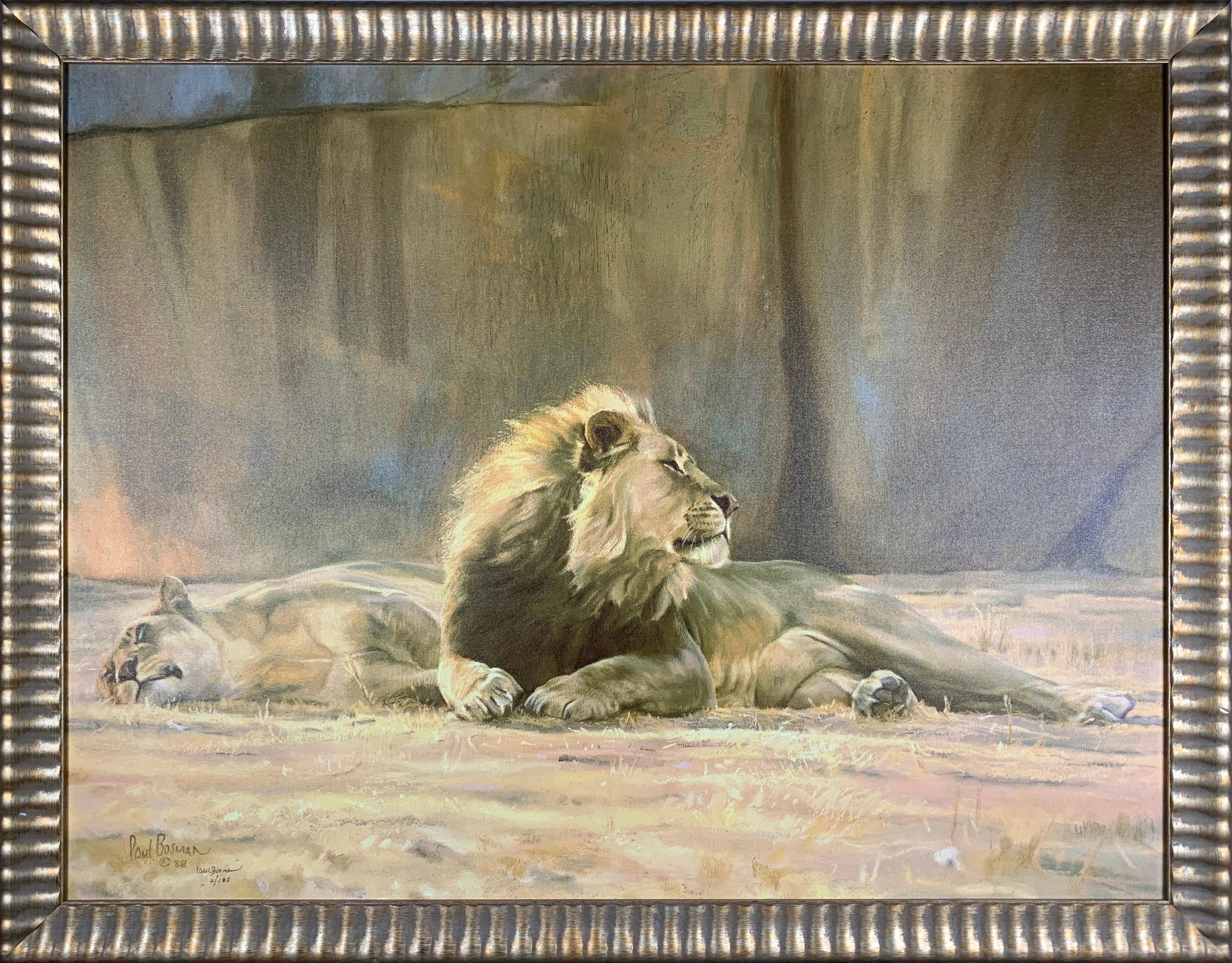"Paul Bosman's ""Cat's Content"" Limited Edition Canvas"