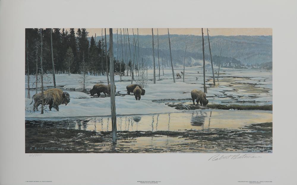 "Robert Bateman's "" Morning on the Flats Bison "" Limited Edition Print"""