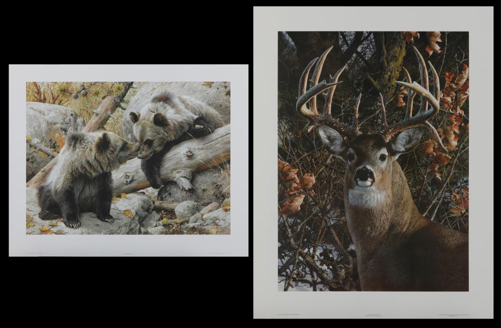 Carl Brenders Limited Edition Prints