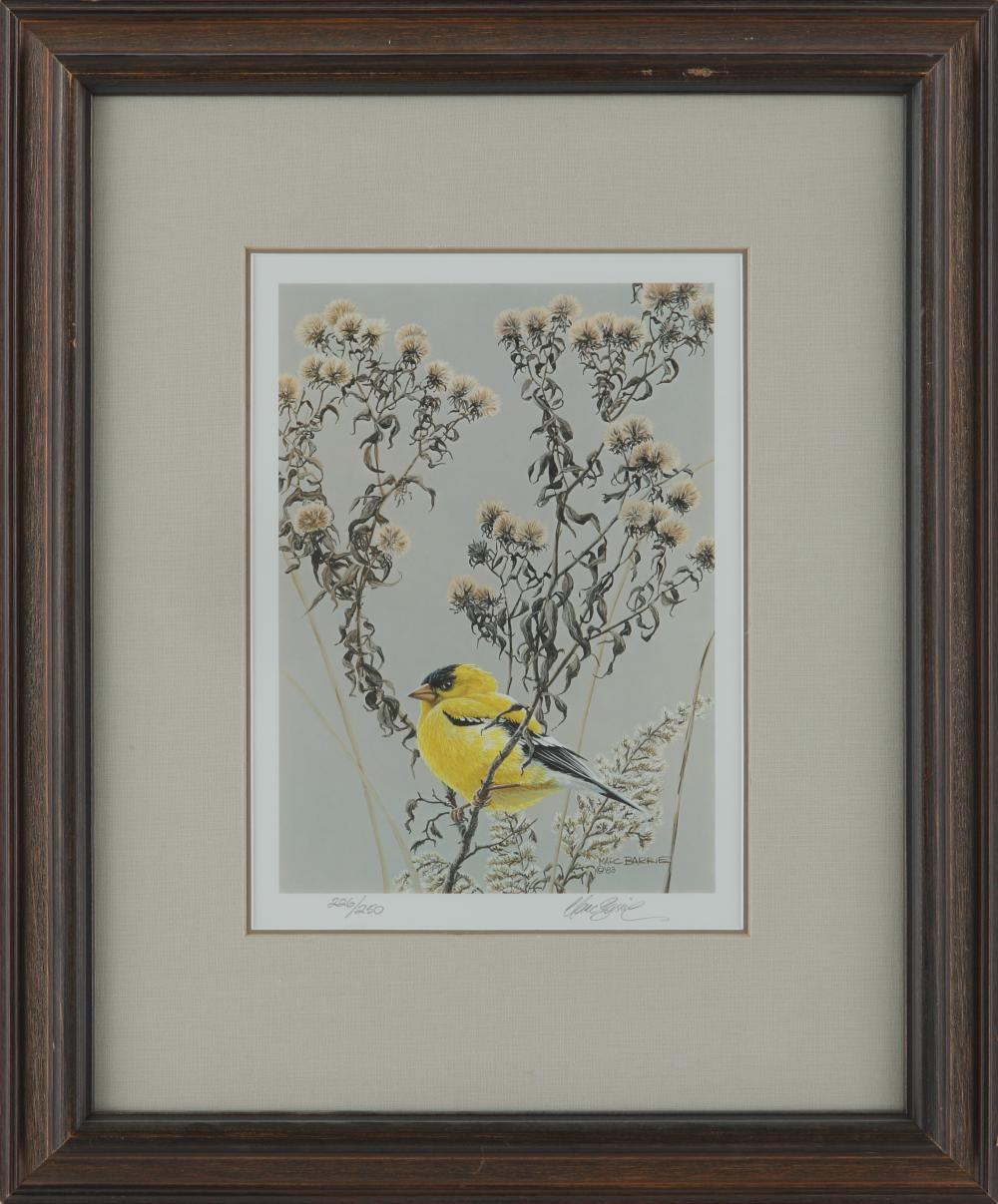 Marc Barrie Limited Edition Framed Print