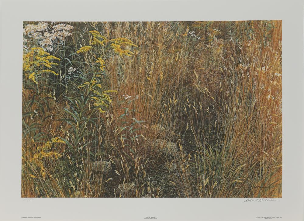 "Robert Bateman's ""Marginal Meadow"" Limited Edition Print"