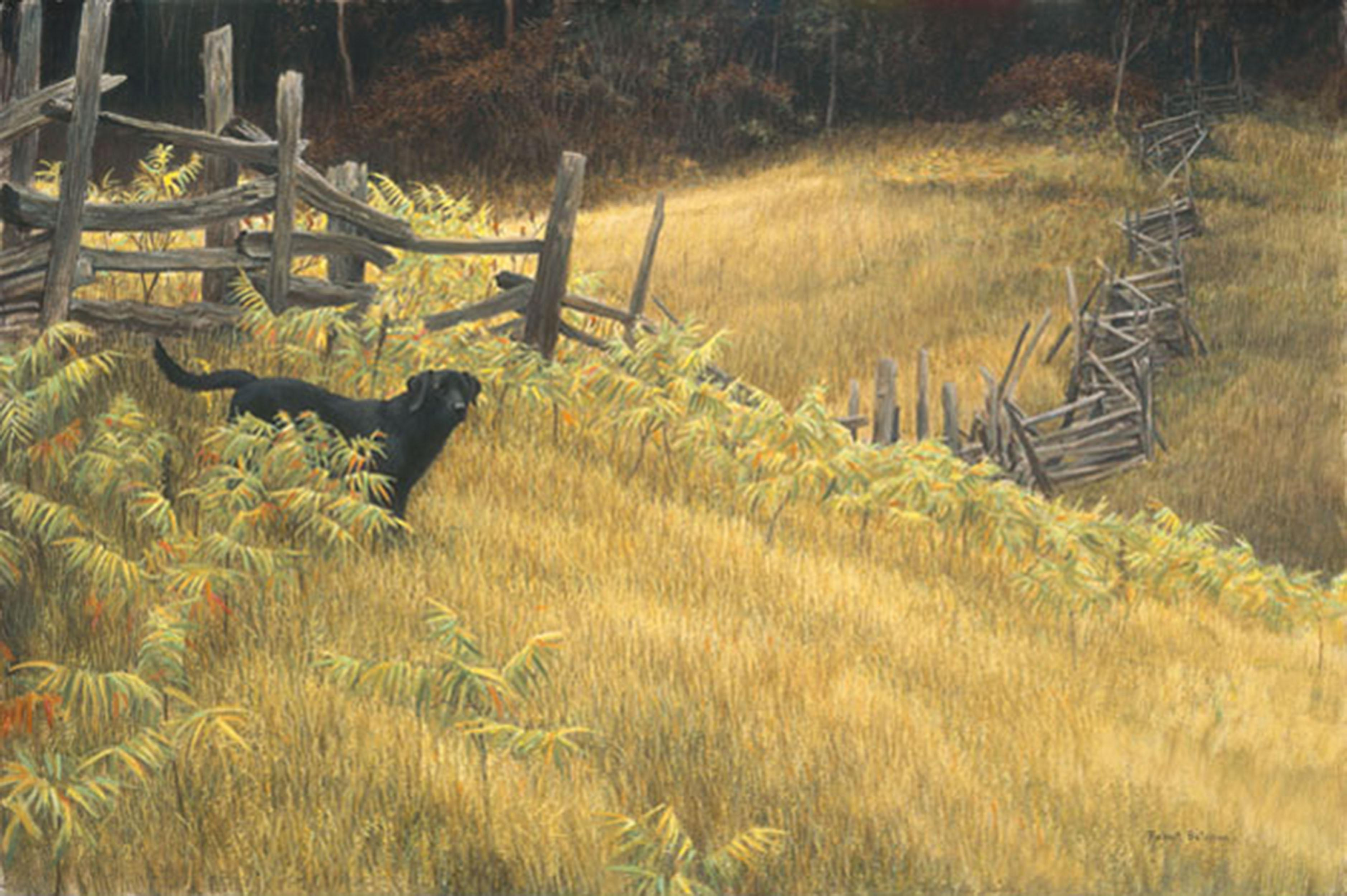 """Robert Bateman's """"Smallwood"""" Limited Edition Canvas Signed And Numbered"""