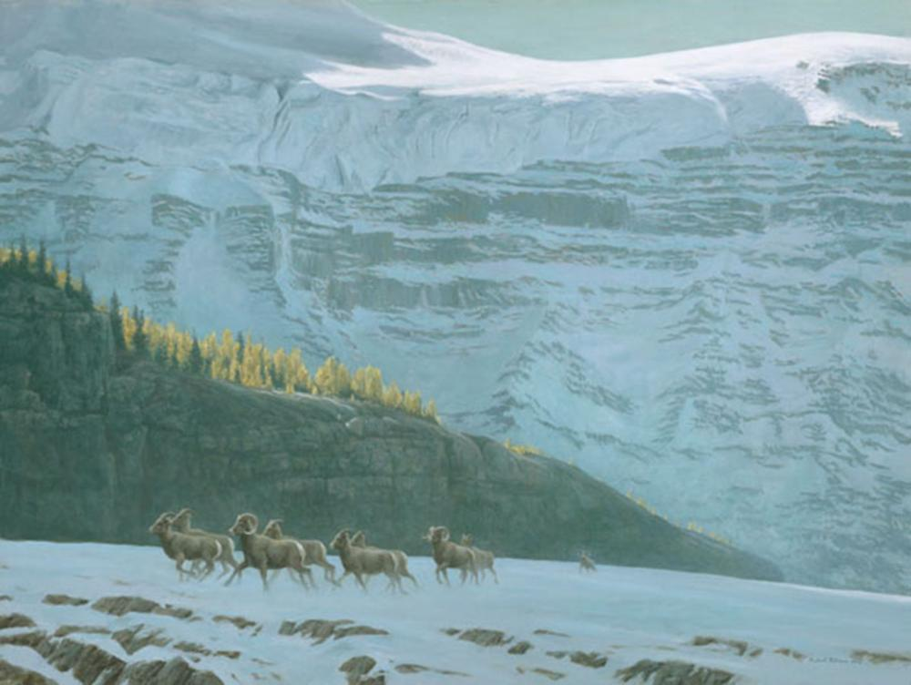 "Robert Bateman's ""Big Horn Sheep Herd"" Limited Edition Canvas Signed And Numbered"