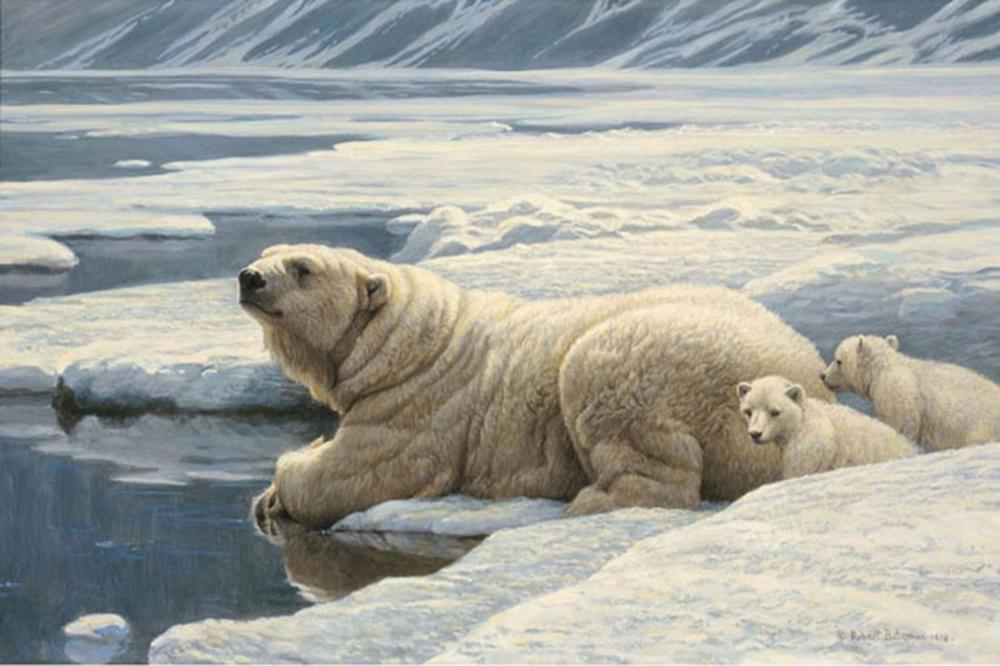 """Robert Bateman's """"Arctic Family - Renaissance Edition"""" Limited Edition Canvas Signed And Numbered"""