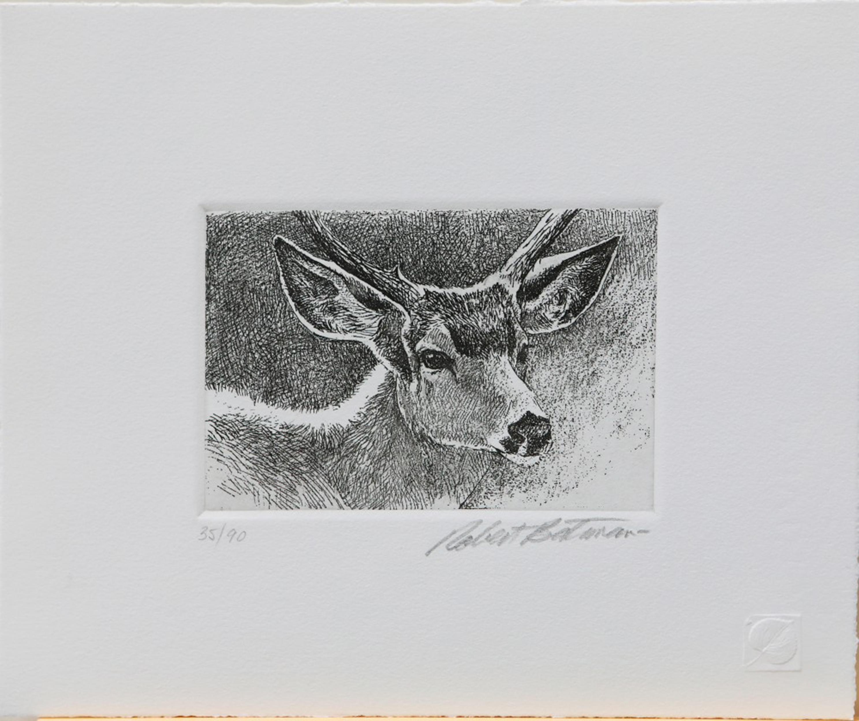 "Robert Bateman's ""Black-Tailed Deer Portrait"" Limited Edition Original Lithograph"