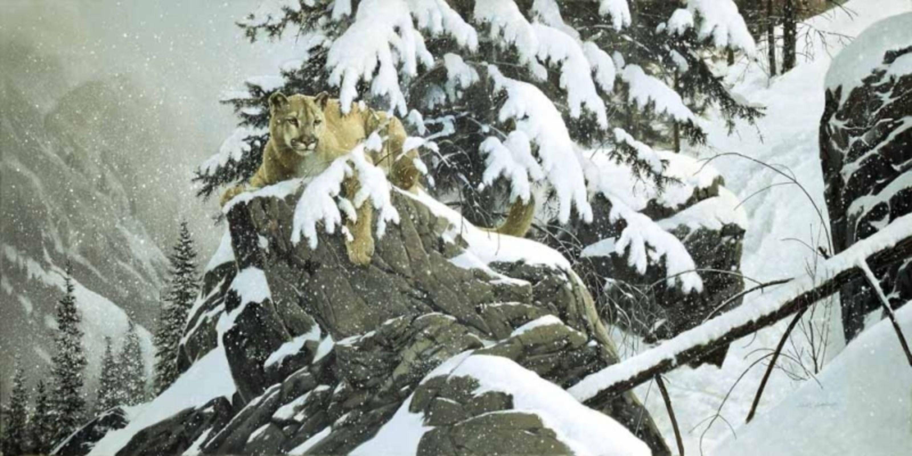 "Doug Laird's ""At The Cliff Cougar"" Limited Edition Giclee Canvas."