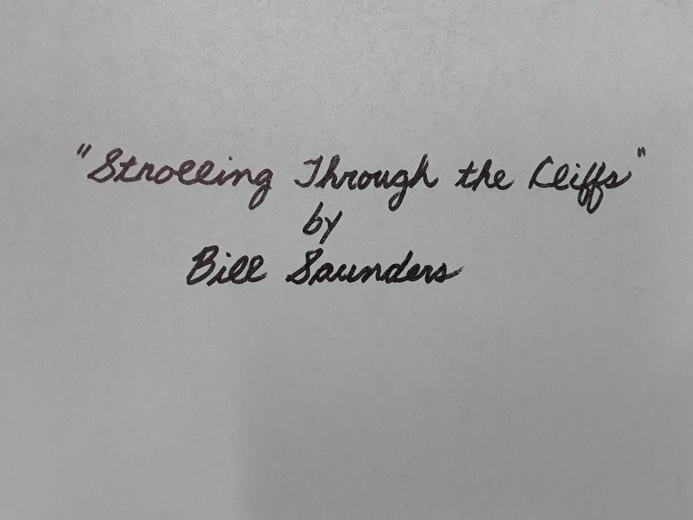 "Bill Saunders' ""Strolling Through The Cliffs"""" Original Acrylic on Masonite Painting"