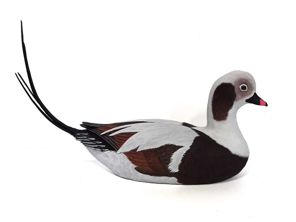 Tony Bendig's Male Long Tailed Duck Decoy Carving