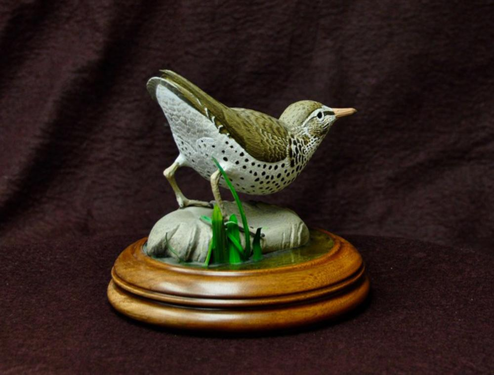 "B Beckings' ""Spotted Sandpiper"" Original Hand Painted Wood Carving"