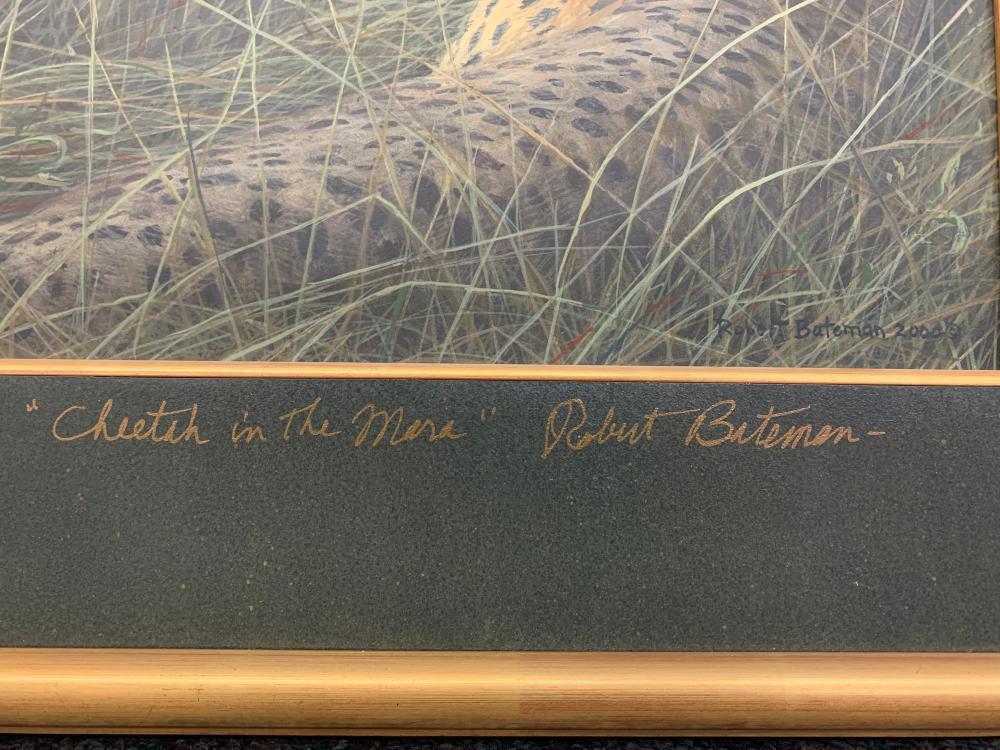 """Robert Bateman's """"Cheetah in the Mara"""" Original"""
