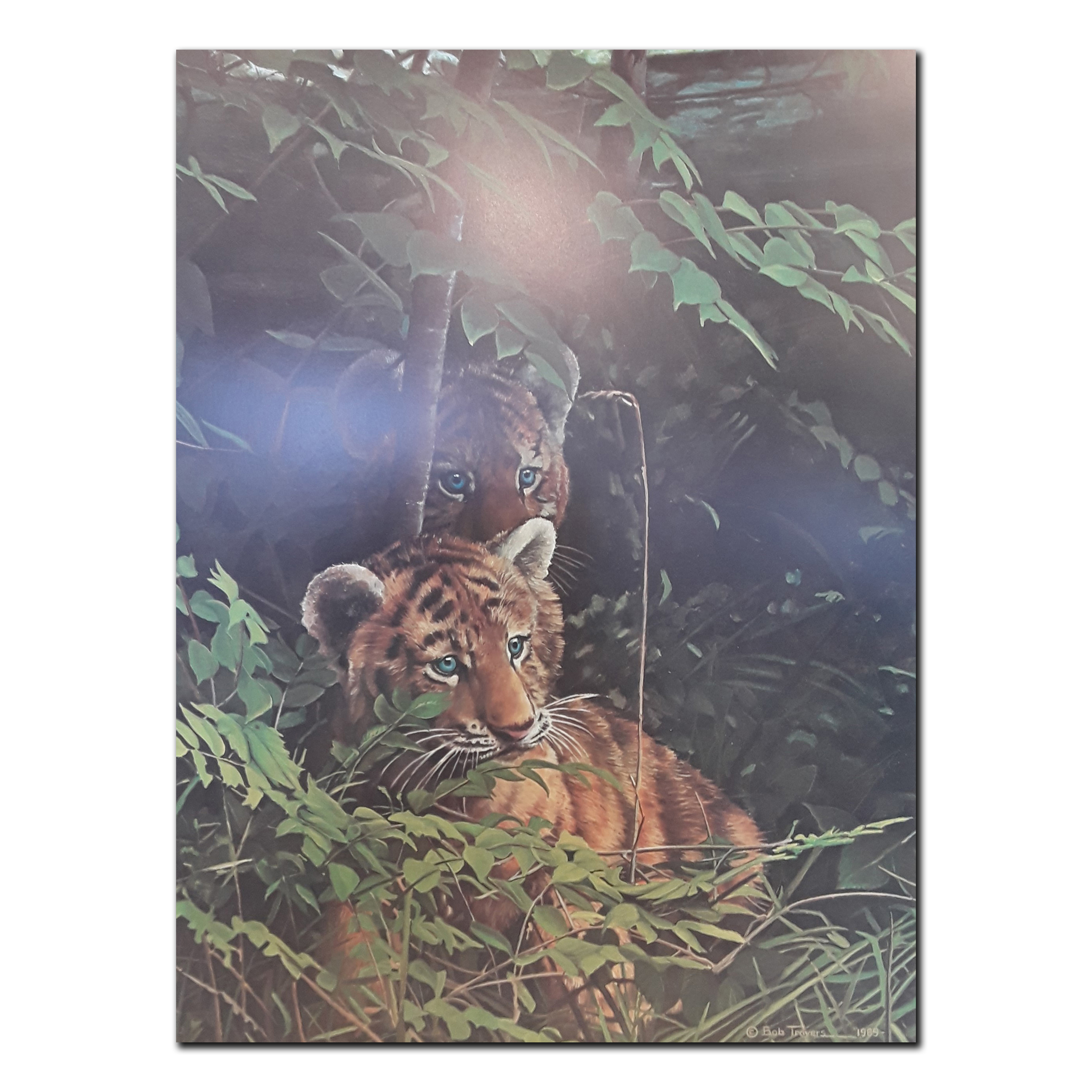 """Bob Travers' """"Undercover Cubs"""" Limited Edition Prints"""