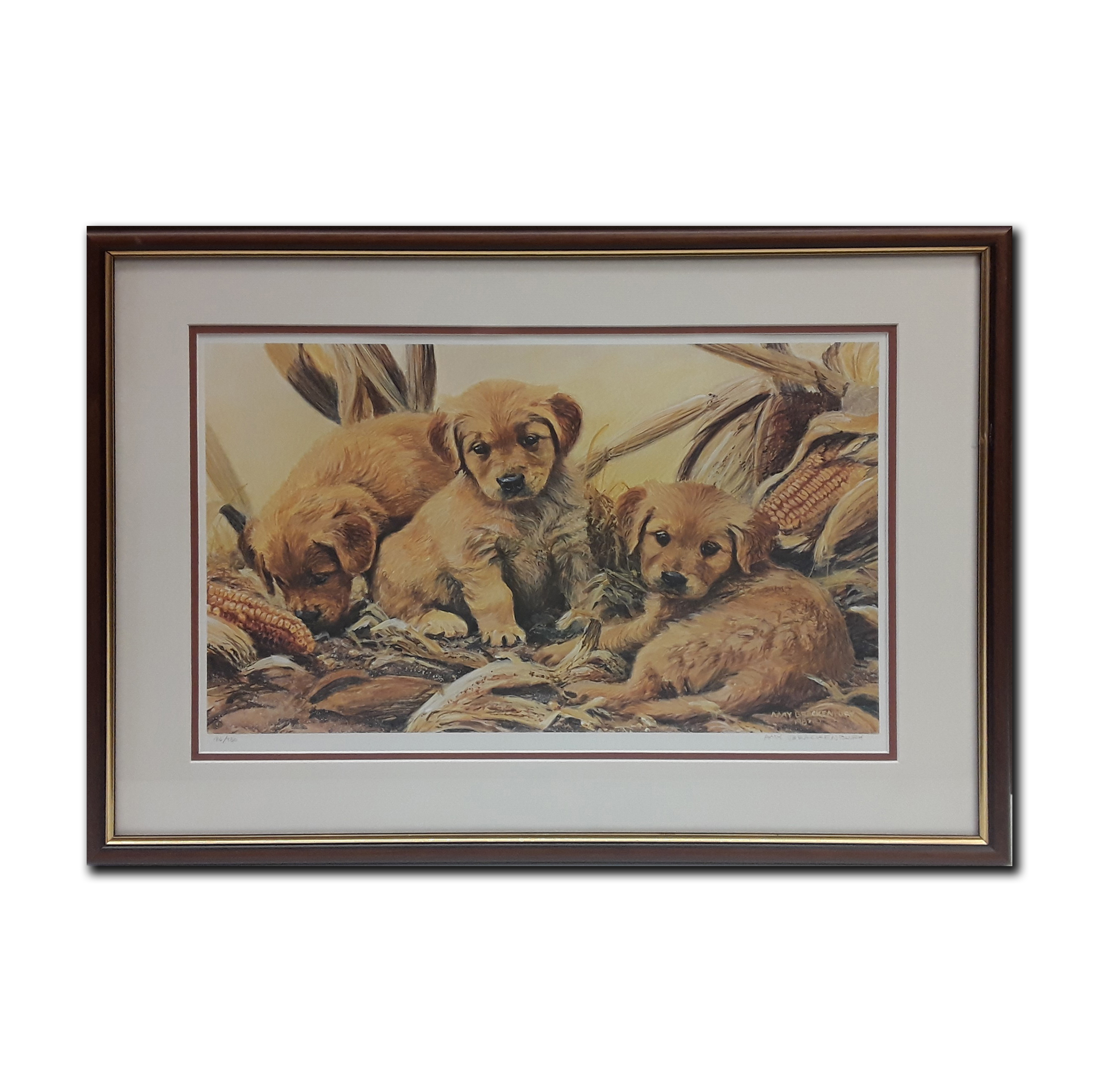 "Amy Brackenbury's ""Corn Dogs "" Limited Edition Framed Print"