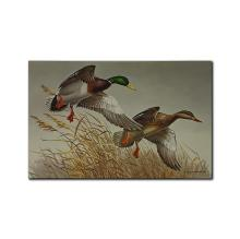 Print and Stamps - Maynard Reece's 'Autumn Wings- Mallards' Limited Edition Print and Matching Stamp