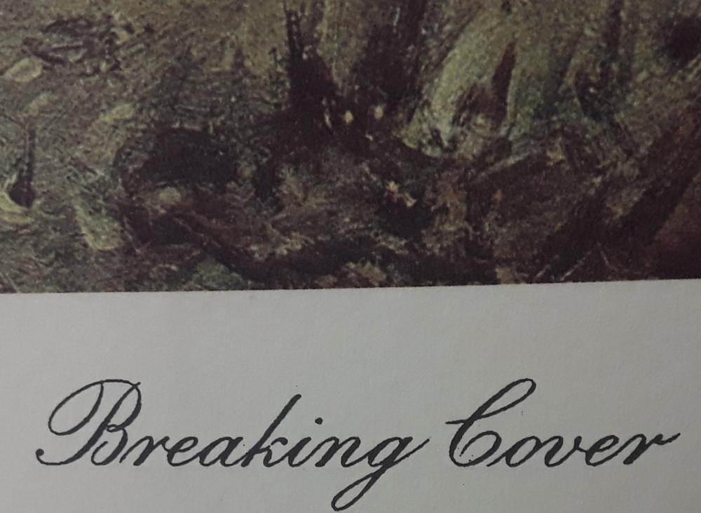 """Arti Grafiche Ricordi's """"Breaking Cover"""" Limited Edition Print"""