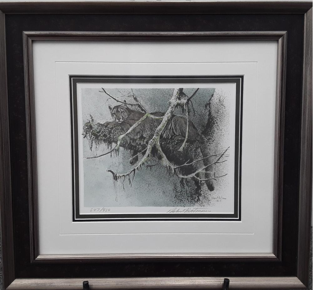 """Robert Bateman's """"Cougar in Tree"""", """"Young Cougar"""", and """"Cougar Portrait"""" Limited Edition Framed Prints"""