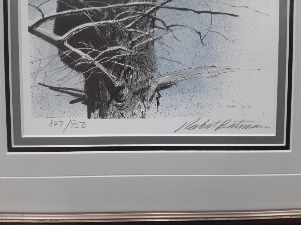 "Robert Bateman's ""Black Bear Foraging"", ""Black Bear Cubs In Tree"", and ""Black Bear Portrait"" Limited Edition Framed Prints"