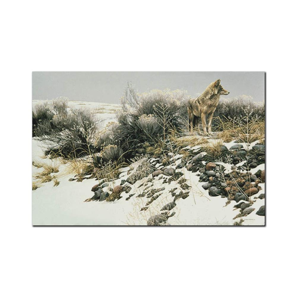 """Robert Bateman's """"Coyote In Winter Sage"""" Limited Edition Canvas Showstopper"""
