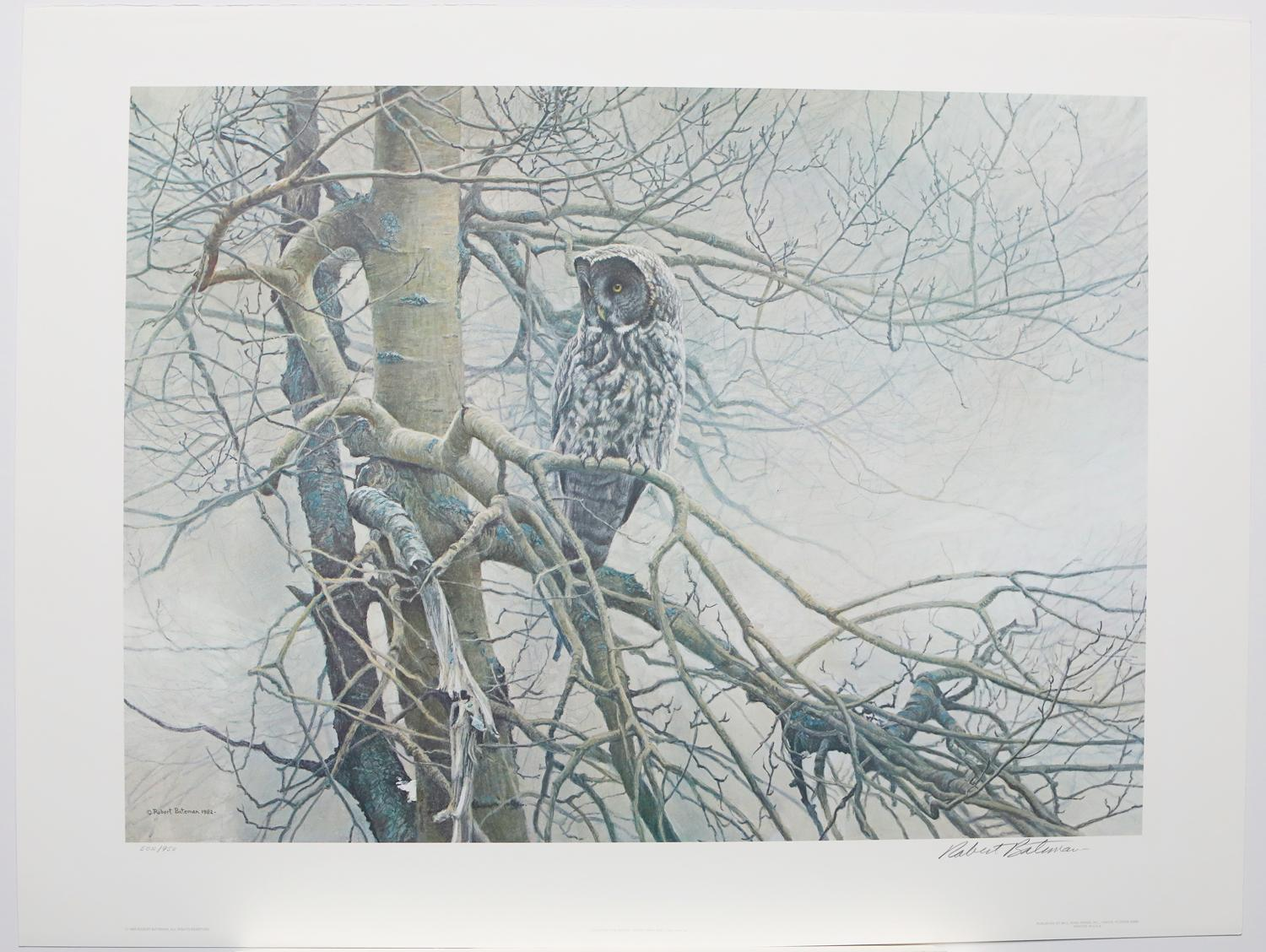 """Robert Bateman's """"Ghost of The North - Great Gray Owl"""" Limited Edition Print Signed and Numbered"""