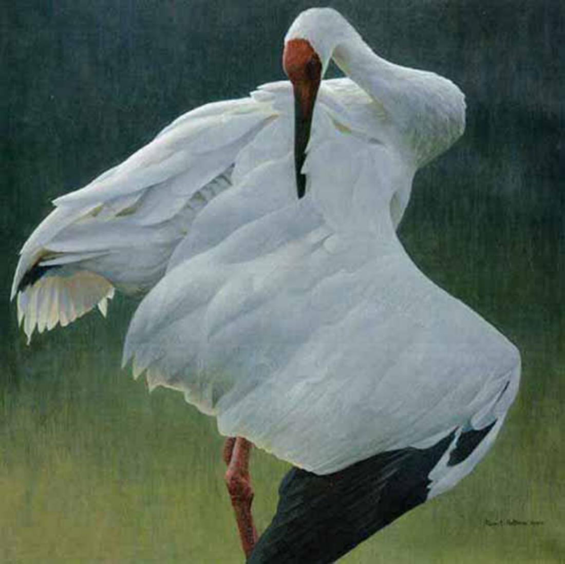 "Robert Bateman's ""Defensive Stand"" Limited Edition Canvas Signed And Numbered"