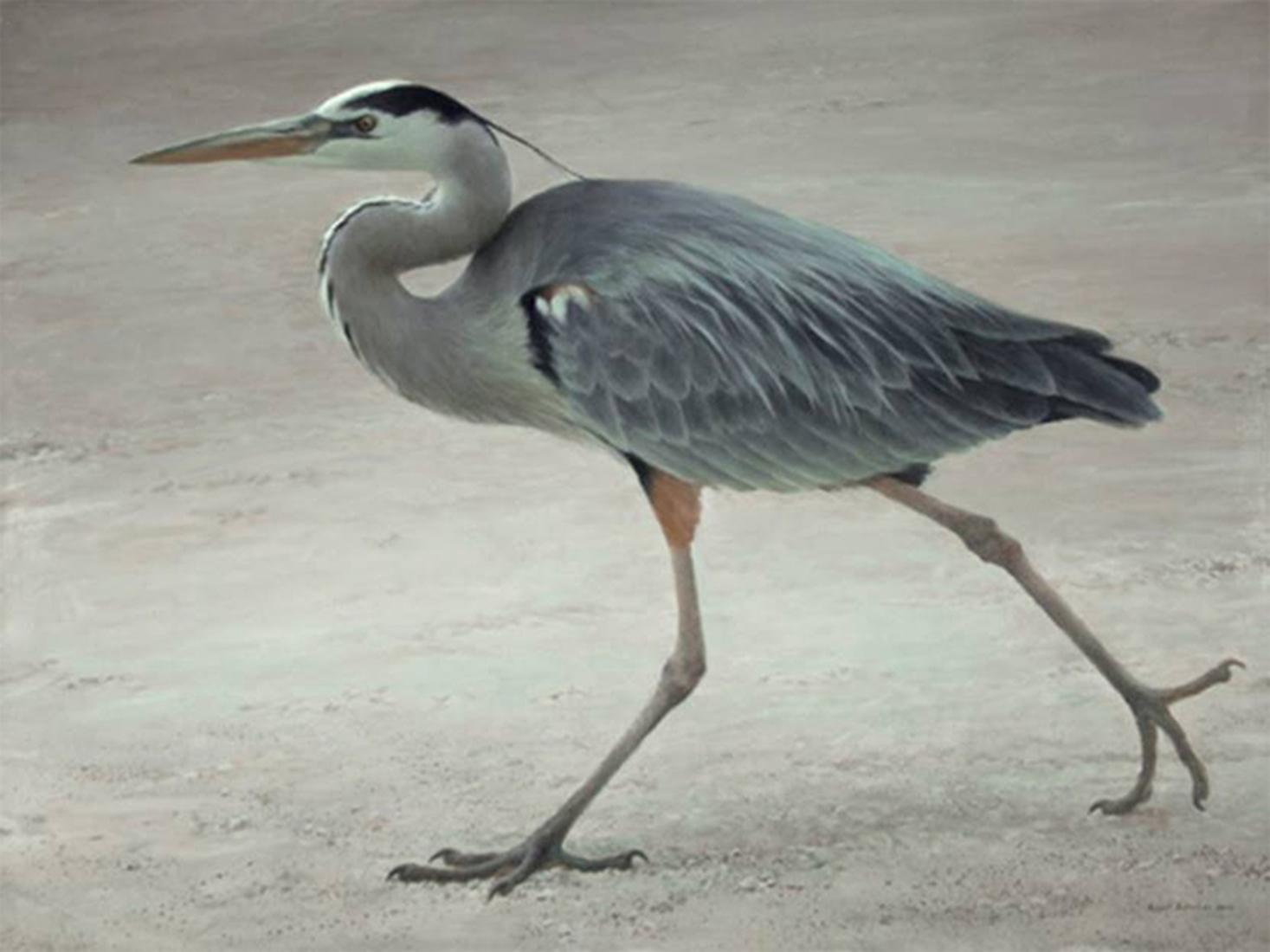 "Robert Bateman's ""Full Stride - Blue Heron"" Limited Edition Canvas Signed And Numbered"