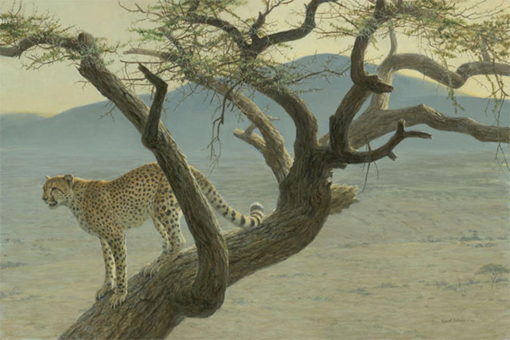 "Robert Bateman's ""Lewa Cheetah"" Limited Edition Canvas Signed And Numbered"