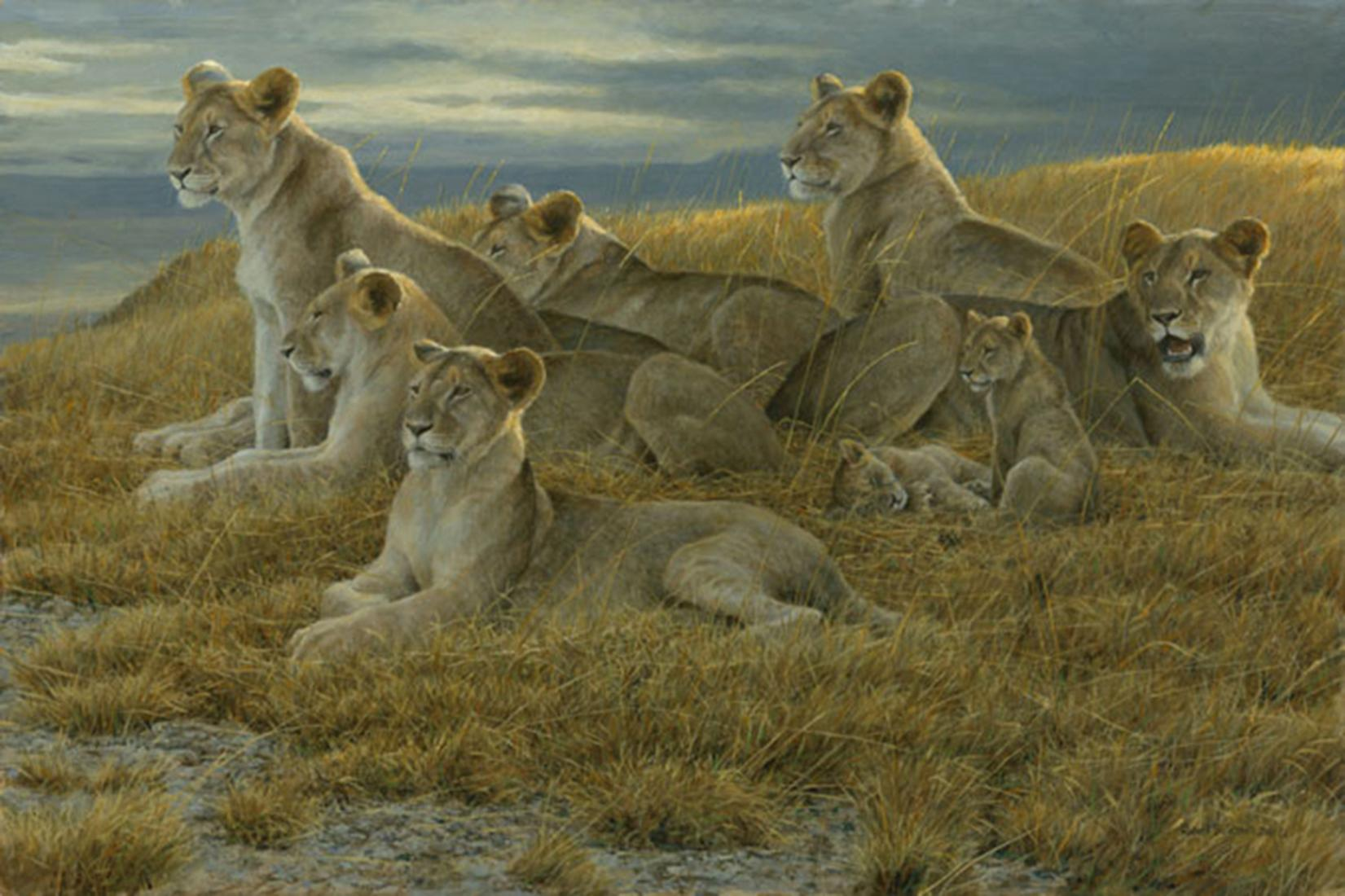 """Robert Bateman's """"Family Gathering - Lioness and Cubs"""" Limited Edition Canvas Signed And Numbered"""