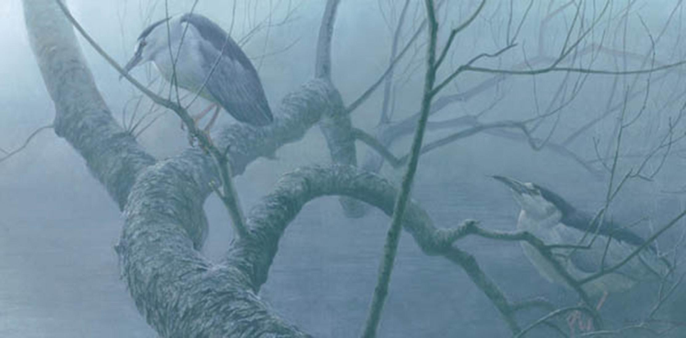 "Robert Bateman's ""Black-Crowned Night Heron Pair"" Limited Edition Canvas Signed And Numbered"