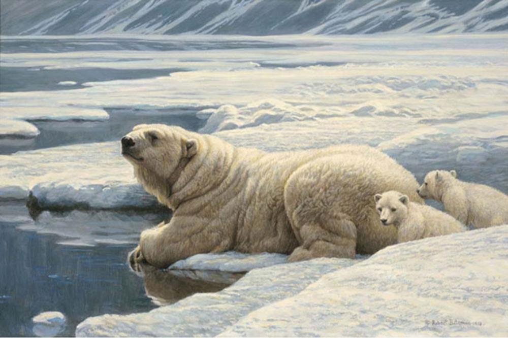 "Robert Bateman's ""Arctic Family - Renaissance Edition"" Limited Edition Canvas Signed And Numbered"