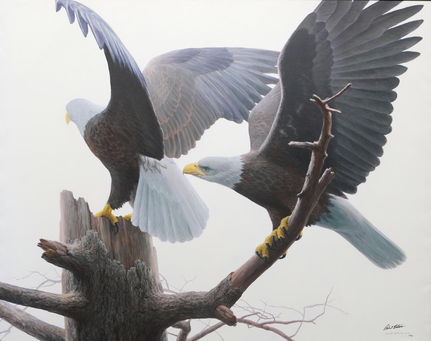 "Robert Bateman's ""Landings - Bald Eagles"" Limited Edition Framed Canvas Signed and Numbered"