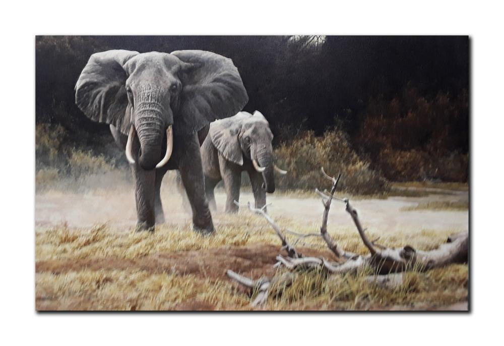 "Robert Bateman's ""Elephant, Cow And Calf"" Limited Edition Canvas"