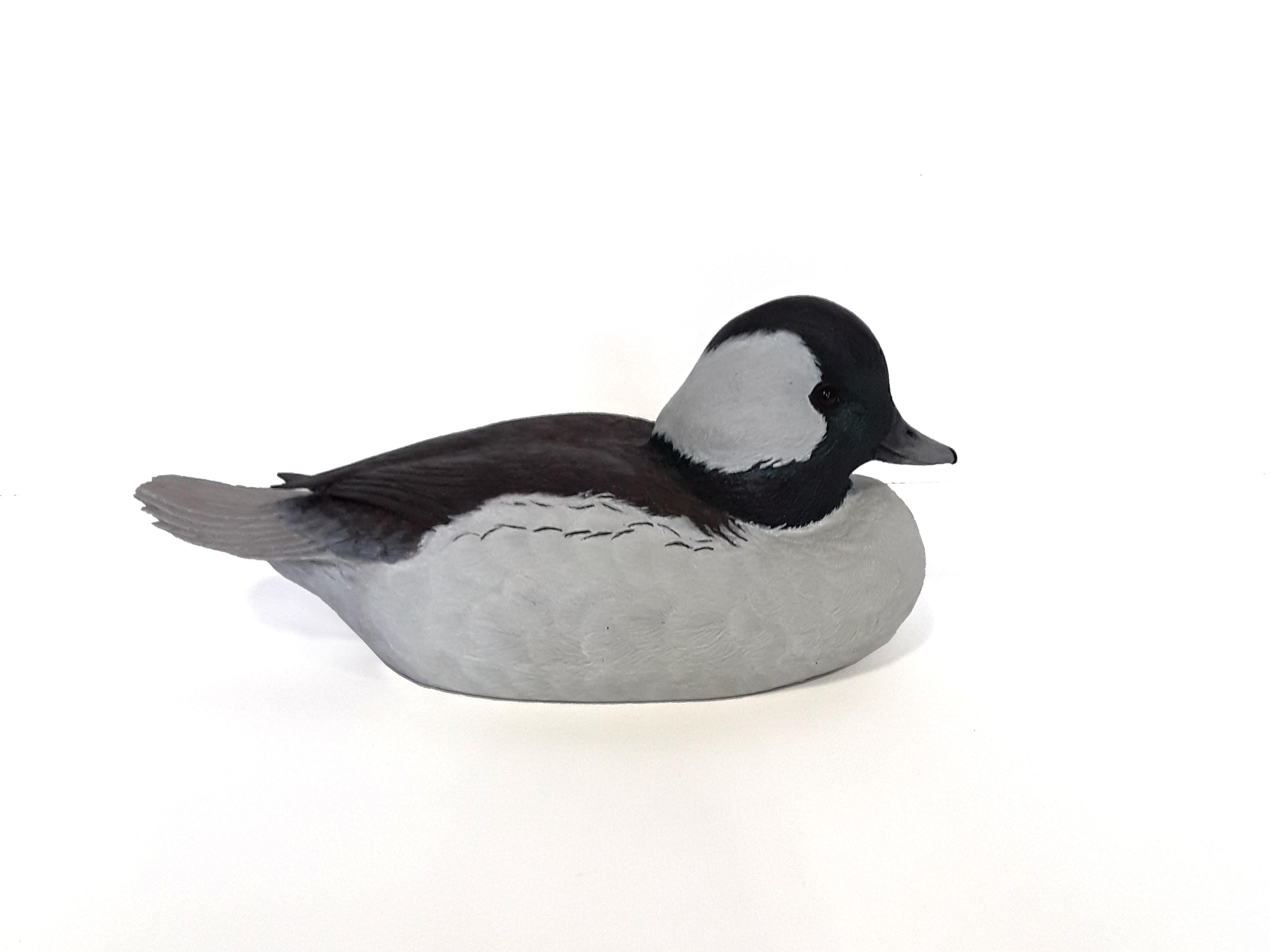 Tony Bendig's Bufflehead Duck Carving