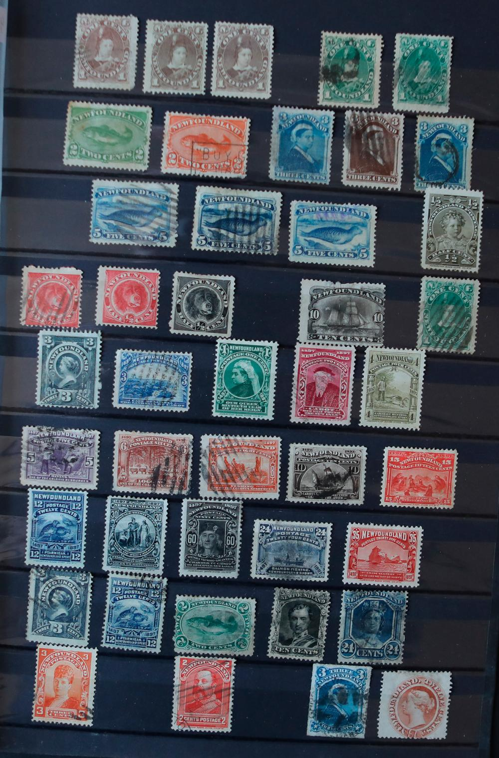 Canada Newfoundland Large Stamp Collection