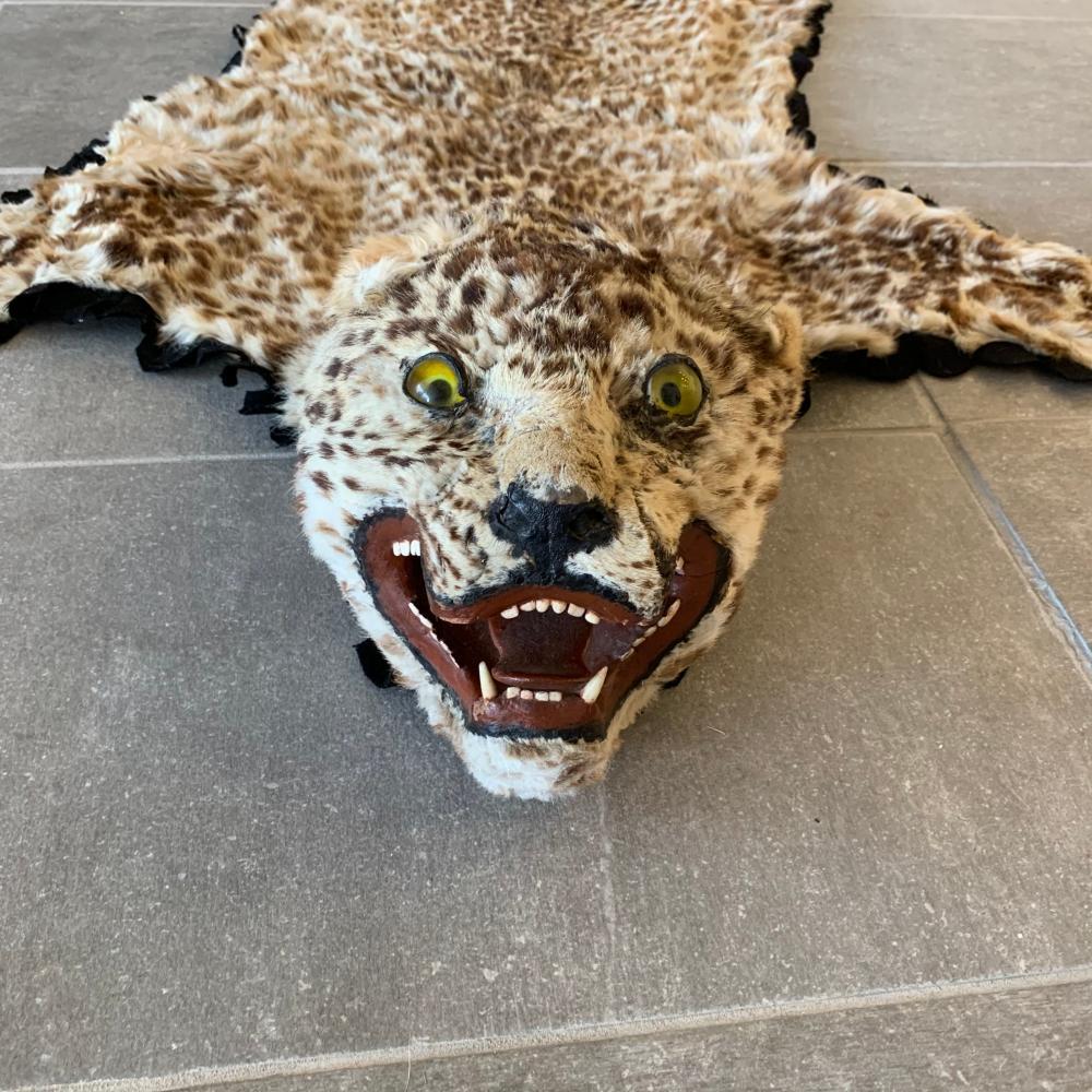 Genuine Leopard Skin Rug