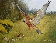 James English ARHA (b.1946) Bird of Prey (1979)