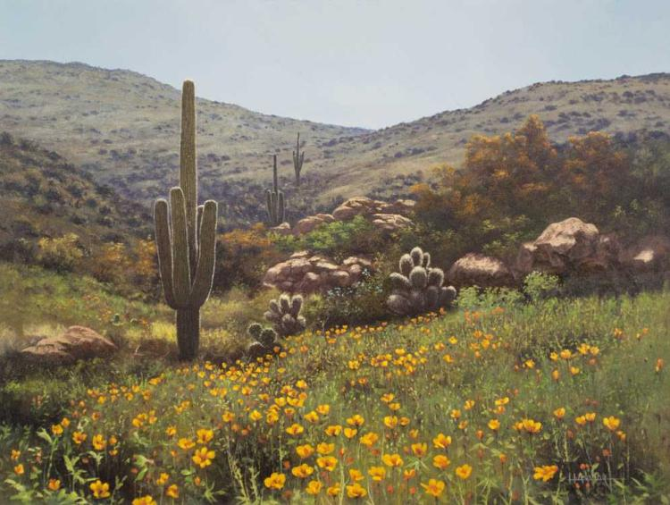 SONORAN DESERT OIL ON CANVAS