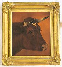 AYRSHIRE BOVINE OIL ON CANVAS, late 19th/early