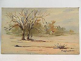 "Peter Daniel VAN BLOMMESTEIN (20thC) OIL ON BOARD ~ ""KALAHARI LANDSCAPE"", 35 X 59cms"