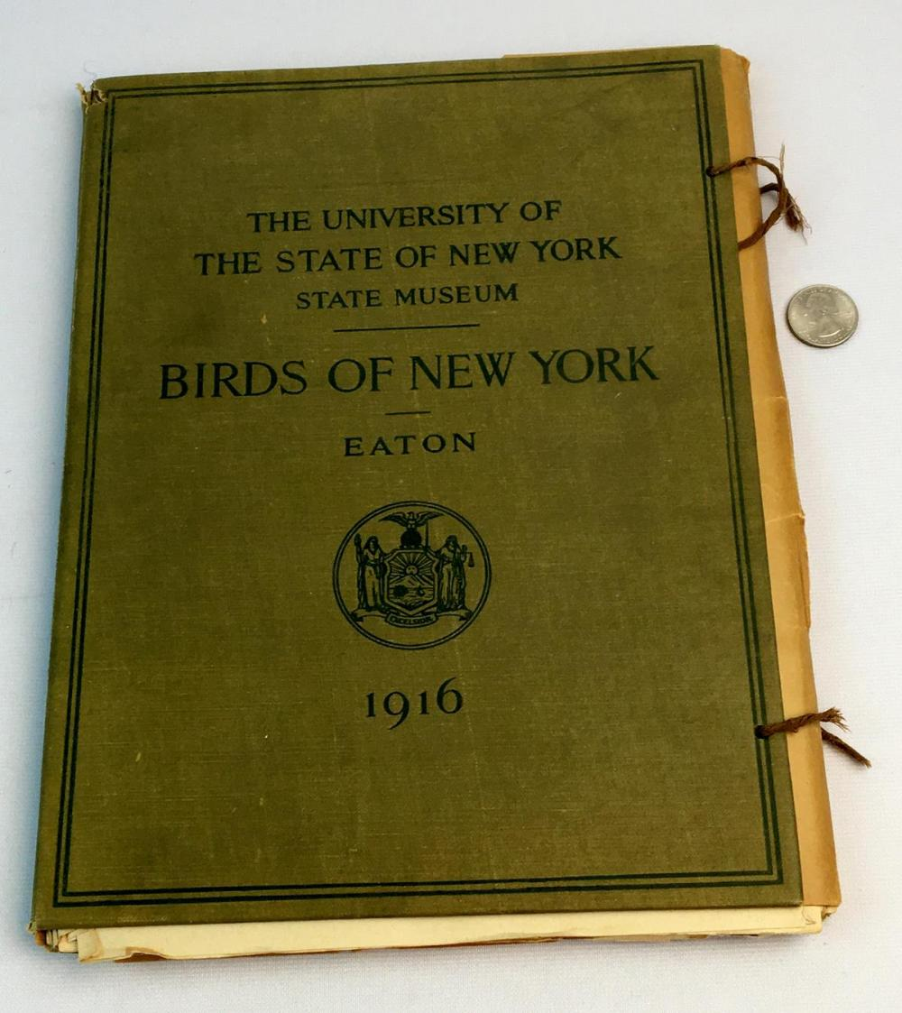 1916 Birds of New York: The University of the State of New York State by LA Fuertes ILLUSTRATED