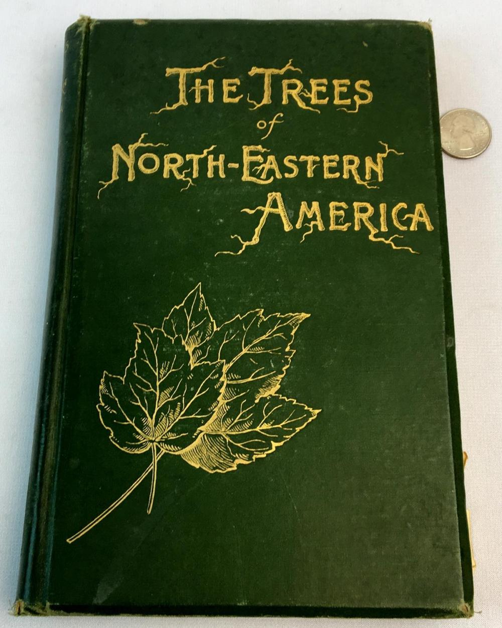 1893 The Trees of Northeastern America by Charles S. Newhall ILLUSTRATED