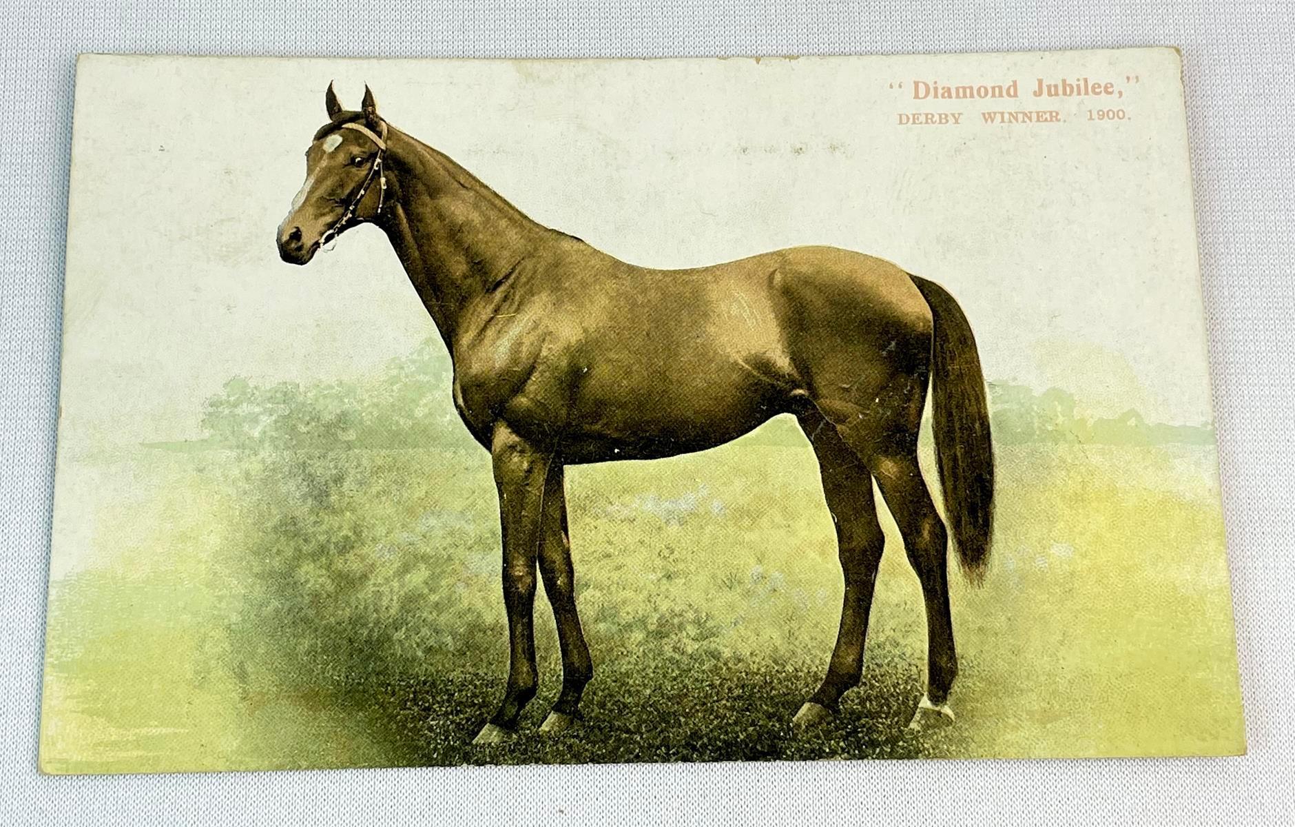 Antique c. 1905 Thoroughbred Horse Diamond Jubilee Epsom Derby Winner for 1900 Postcard