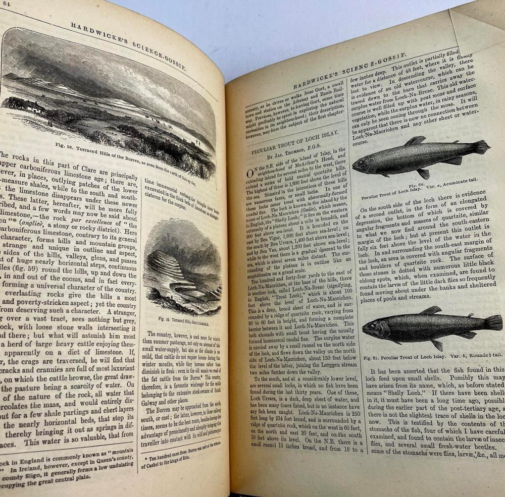 1873 Hardwicke's Science - Gossip: An Illustrated Medium of Interchange & Gossip for Students & Lovers of Nature by J. E. Taylor FIRST EDITION