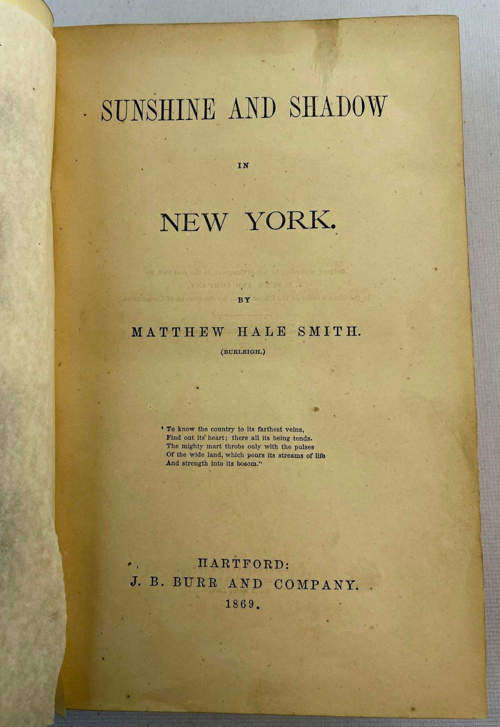 1866 Sunshine And Shadow In New York by Mathew Hale Smith ILLUSTRATED