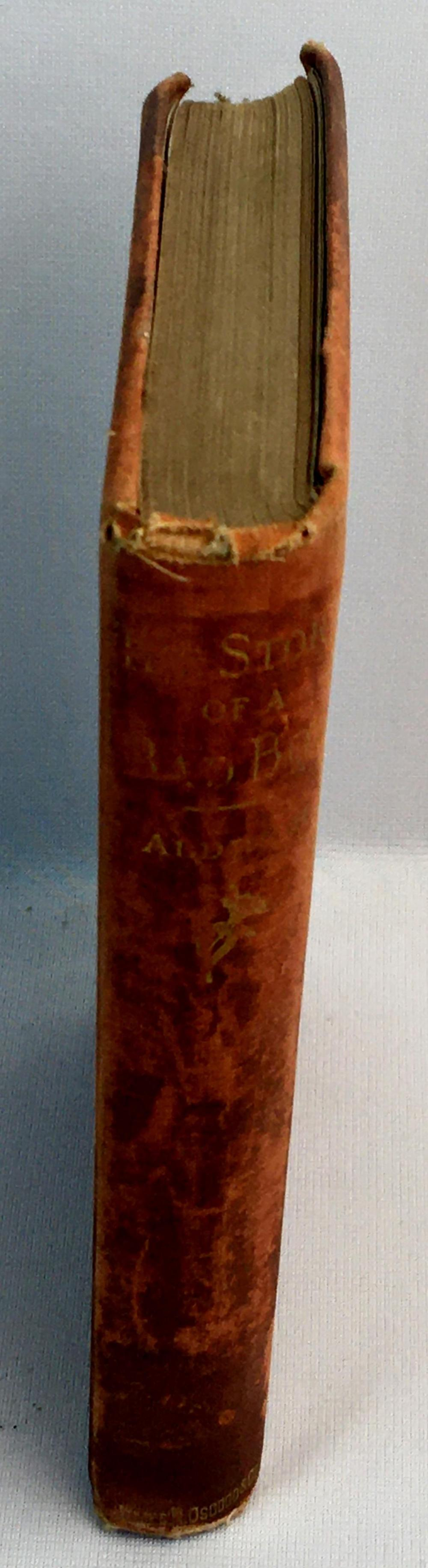 1876 The Story of a Bad Boy by Thomas Bailey Aldrich ILLUSTRATED