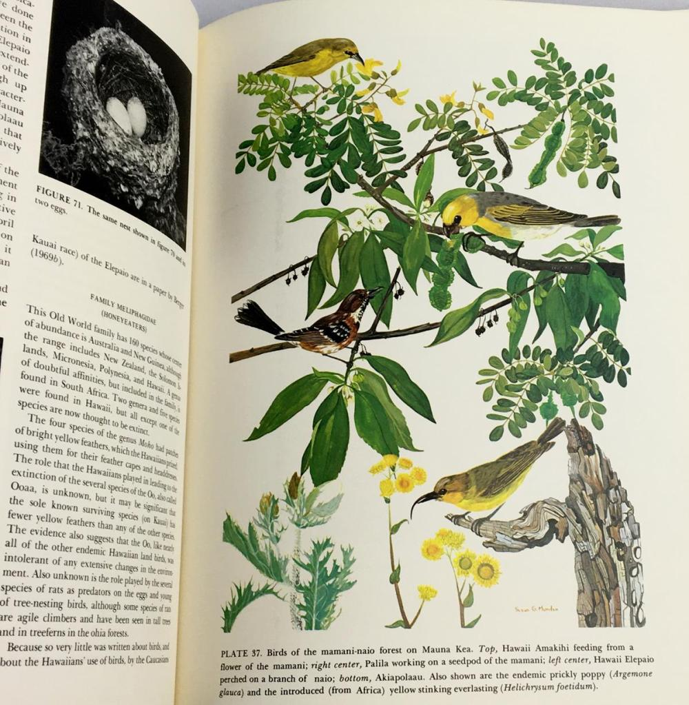 1972 Hawaiian Birdlife by Andrew J. Berger w/ Dust Jacket Illustrated FIRST EDITION