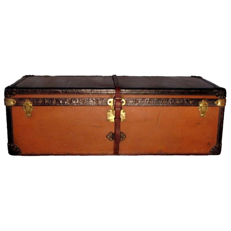 Louis Vuitton Vuittonite Cabin Trunk
