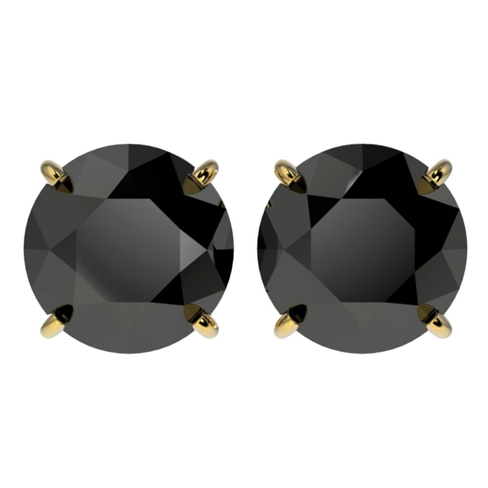 4.19 ctw Fancy Black Diamond Solitaire Stud Earrings 10K Yellow Gold - REF-84M2F - SKU:36713