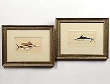 TWO HAND COLORED NODDER ENGRAVINGS OF A SWORDFISH AND MARLIN