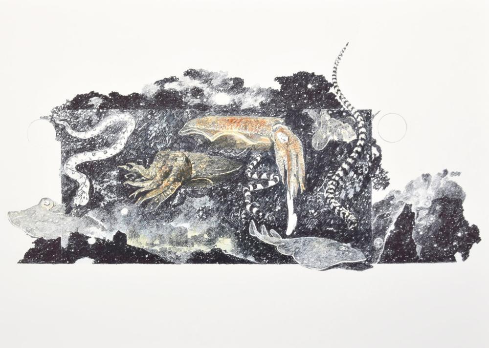 Ann Wyeth McCoy Lithograph, Signed Edition