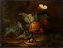 Elias van den Broeck