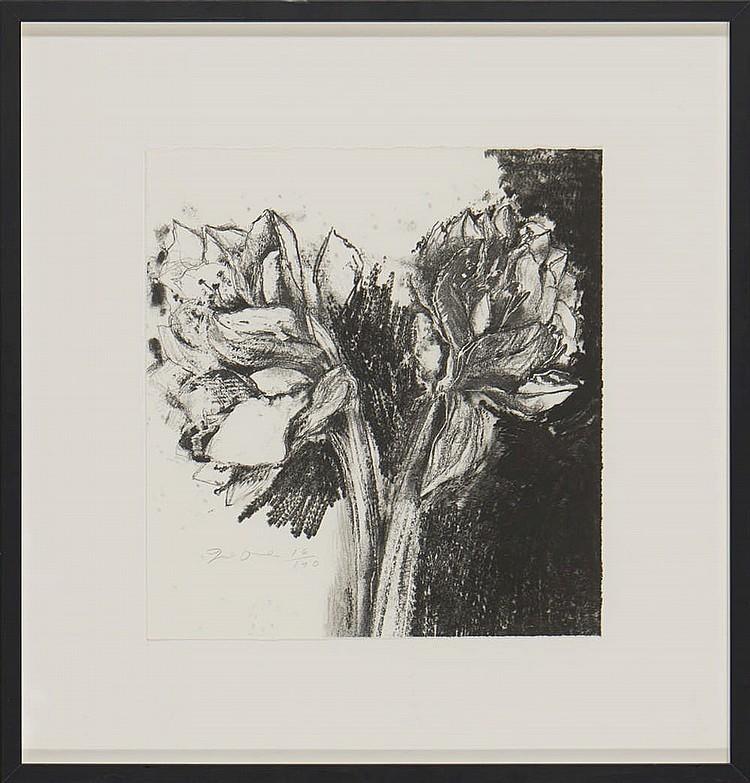 """JIM DINE, """"ENTRADA LIVRE"""", livro e litografia (2)"""